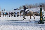 В Барнауле состоялись открытые зимние чемпионат и первенство края по конкуру, выездке и двоеборью.