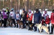 В Барнауле прошёл первый этап Кубка России по гонке-буксировке и Кубок на призы зоомаркета «Альф» в состязаниях упряжек.