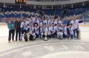 Новый сезон Ночной Хоккейной Лиги стартовал в Алтайском крае