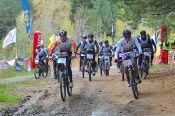 Алтайские спортсмены – победители и призёры Всероссийских соревнований и Открытых межрегиональных соревнований по спортивному ориентированию на велосипедах «Сибирские просторы».