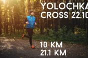 В Барнауле 22 октября пройдёт лесной полумарафон «Yolochka Cross».