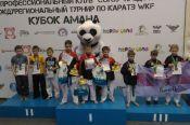 Алтайские спортсмены завоевали 16 медалей на IV межрегиональном турнире по каратэ WKF «Кубок АМАНа» среди детей младшего и среднего возраста.