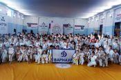 В Барнауле прошёл Открытый межрегиональный турнир – XIII Кубок Алтайского края по спортивному контактному каратэ «Altay open-2017».