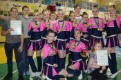 Алтайские команды выиграли три медали на открытом чемпионате Новосибирской области (фото).