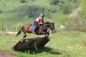 Среди конников Алтайского края появился ещё один мастер спорта – шестой в истории конного спорта в нашем регионе.