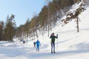 В селе Алтайском 17 марта пройдёт массовая лыжная гонка на 25 километров