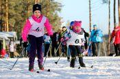 Добавлены протоколы и новые фотографии VIII зимней олимпиады городов Алтайского края
