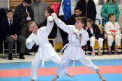 10 площадок, 3500 участников: в Барнауле прошёл масштабный фестиваль боевых искусств и единоборств