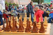 В Центральном парке Барнаула 1 июня прошёл массовый детский турнир по шахматам