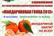 На лыжной базе «Локомотив» 29 декабря пройдут соревнования по ориентированию на лыжах «Мандариновая гонка».