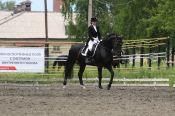 Около 100 конников участвовало в чемпионате и первенстве Алтайского края