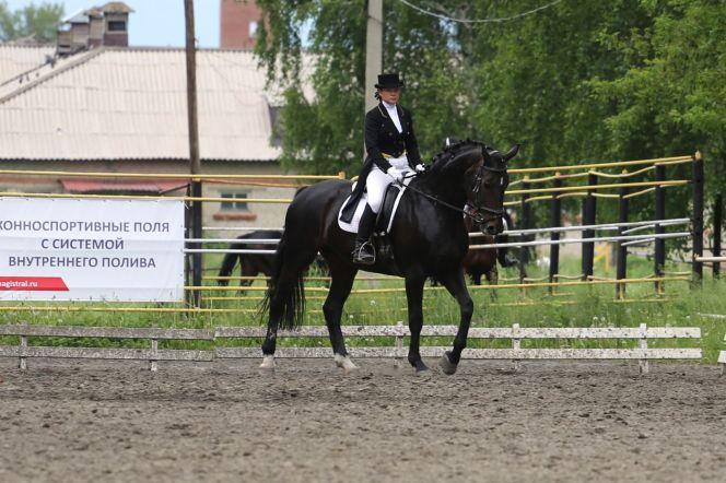 Фото: Федерация конного спорта Алтайского края