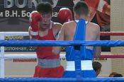 Трое алтайских боксёров выиграли титул чемпионов Сибири