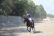 На барнаульском ипподроме стартовал чемпионат края по конному троеборью