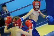 XX Всероссийский юношеский турнир по кикбоксингу памяти тренера Юрия Иванова