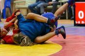 Алтайские самбисты - победители и призёры всероссийского турнира памяти Геннадия Ворошилова