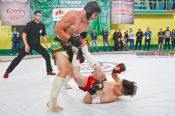 Битва титанов: в Камне-на-Оби прошёл турнир по миксфайту