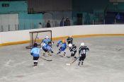 В Славгороде открыт хоккейный сезон