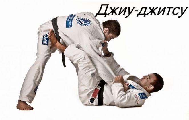 Чемпионат Алтайского края по джиу-джитсу