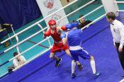 Завершился региональный турнир по боксу памяти погибших сотрудников УФСБ России по Алтайскому краю