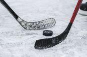 Хоккеисты «Химика» одержали победу в товарищеском матче