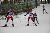В Барнауле состоялись чемпионат и первенства Алтайского края