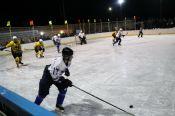 Фото матча хоккейных сборных Волчихинского и Топчихинского районов