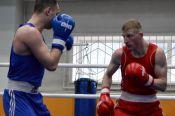 В Барнауле определились лучшие боксеры чемпионата края