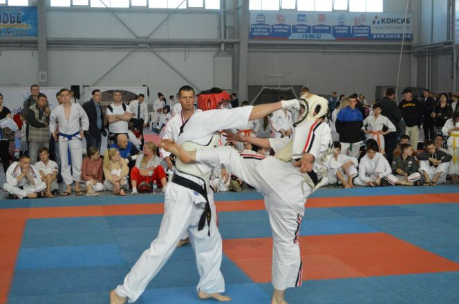 Более 3000 спортсменов из 10 стран приняли участие в Х фестивале боевых искусств и единоборств