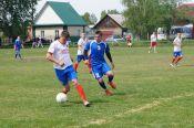 Состоялись 14 отборочных турниров по пяти видам спорта XLI летней олимпиады сельских спортсменов Алтайского края