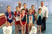 Барнаульские и бийские гимнасты стали призёрами всероссийских соревнований в Ленинске-Кузнецком