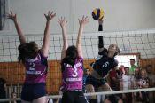 Волейбольные команды Новоалтайска - чемпионы IX летней олимпиады городов (много фото и комментарии)