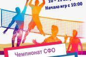 10-11 августа. Барнаул. Парк спорта. Чемпионат Сибирского федерального округа по пляжному волейболу