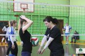 Лига любительского спорта приглашает волейбольные и баскетбольные команды на тренировки и соревнования