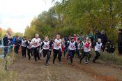 В кроссе «Золотая осень» приняли участие все школы Новичихинского района