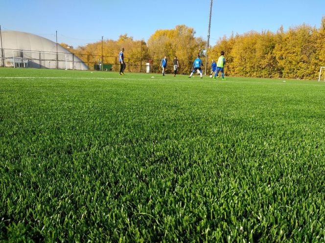 Благодаря федеральному проекту «Спорт - норма жизни» заменен искусственный газон в футбольной школе барнаульского «Динамо»