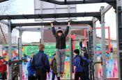 Первая из спортплощадок, поступивших в Алтайский край по федеральному проекту «Спорт — норма жизни», открыта в Ребрихе
