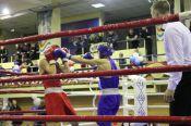 В Барнауле стартовал Всероссийский фестиваль бокса, посвящённый памяти погибших сотрудников УФСБ по Алтайскому краю