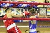 Итоги Всероссийского фестиваля бокса, посвящённого памяти погибших сотрудников УФСБ по Алтайскому краю