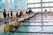 В «Кубке Андрея Гречина» приняло участие около 500 спортсменов (фотографии!)
