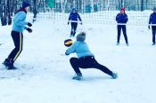 В Заринске состоялся краевой праздник Всероссийского дня снега