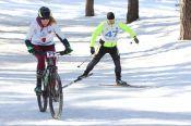«Елочка» и палочки: как лыжная база стала фитнесом будущего
