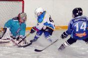 В Славгороде подвели итоги хоккейного турнира XL спартакиады краевых спортшкол среди мальчиков