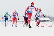 Алтайский росгвардеец стал призером всероссийского чемпионата по служебному двоеборью