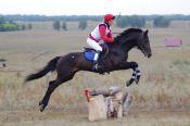 Открытый чемпионат и первенство Алтайского края по конному троеборью 2011 года