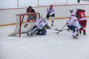 Команды Тальменского и Целинного районов лидируют в подгруппах хоккейного турнира (фото)