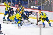 Хоккеисты «Динамо Алтай» - бронзовые призёры регулярного первенства (фото)