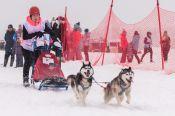 Алтайские спортсмены вернулись с медалями с соревнований по снежным дисциплинам ездового спорта Manzherok Husky Race