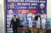 В селе Ребриха состоялось первенство Алтайского края по каратэ WKF